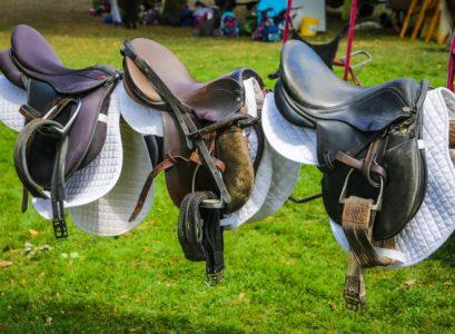 Les composantes de la selle de cheval
