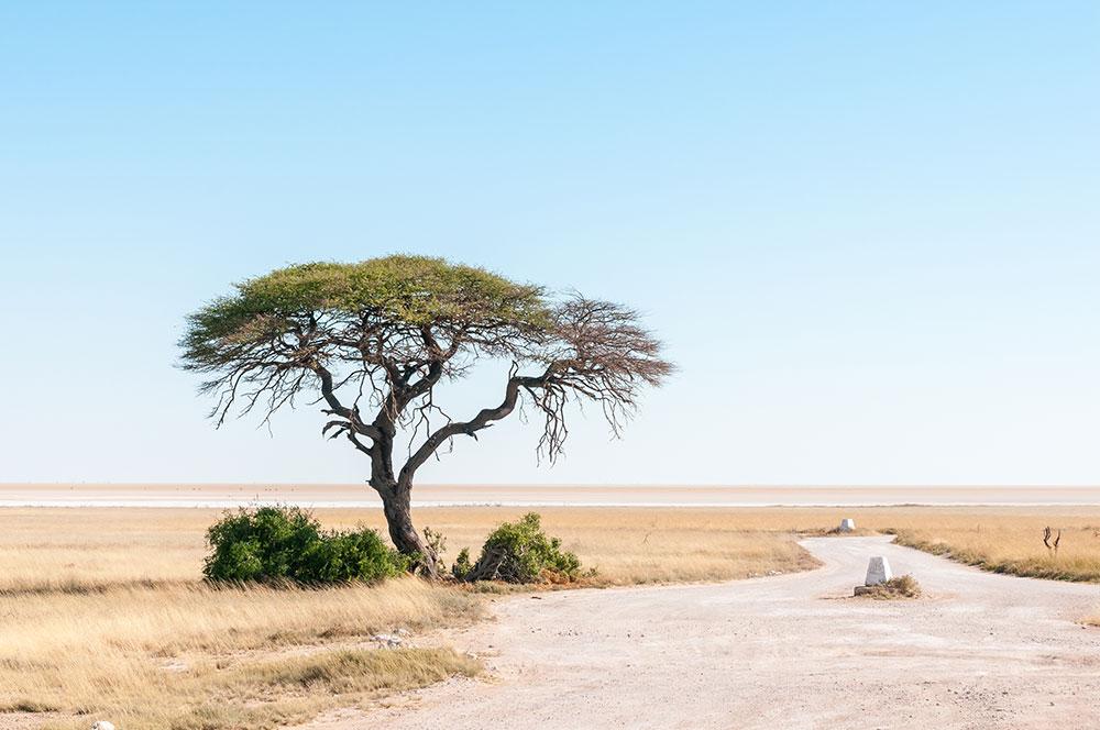 activités en Namibie