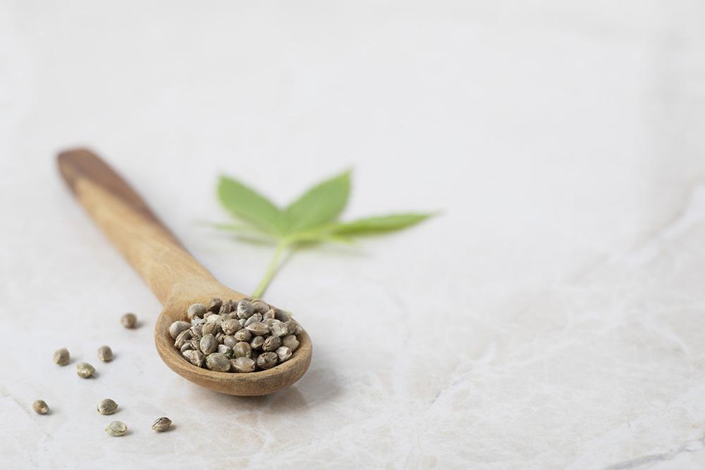 différences graines de cannabis