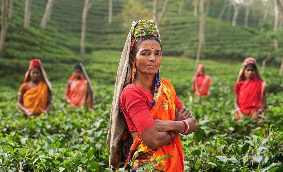 evisa pour l'Inde
