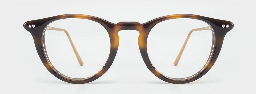 lunettes écailles de face